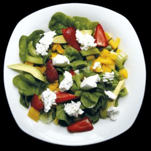 Salanova recept